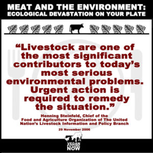 Meat and Environment