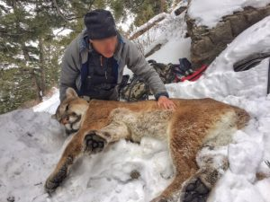 Scientist With Cougar