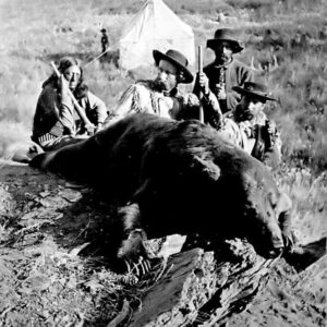 Custer Drops a Bear