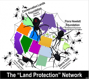 Spider web of Protection
