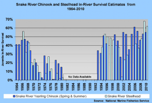 Chinook Survival on the Snake River