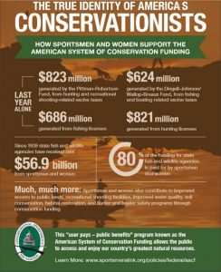American Conservation