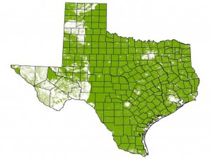 Feral Hog population in Texas (Green)
