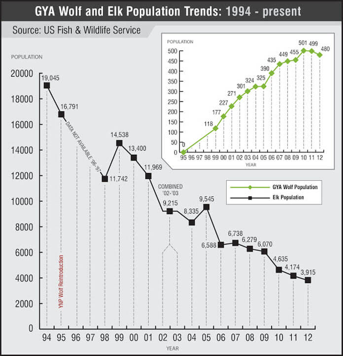 Yellowstone wolf recovery and Elk Loss
