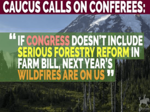 Western Caucus Forestry Reform