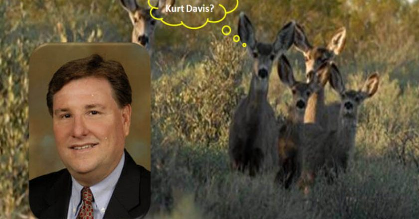 Kurt Daves