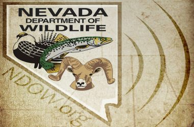 Nevada Game & Fish Patch