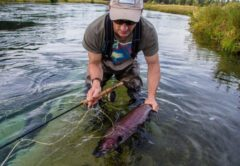 Fly fishing Columbia Tributaries