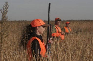 Field Hunting for Pheasants