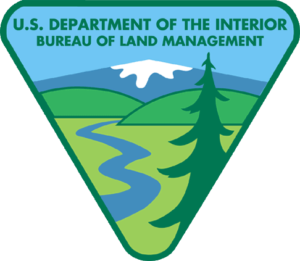 The BLM Logo