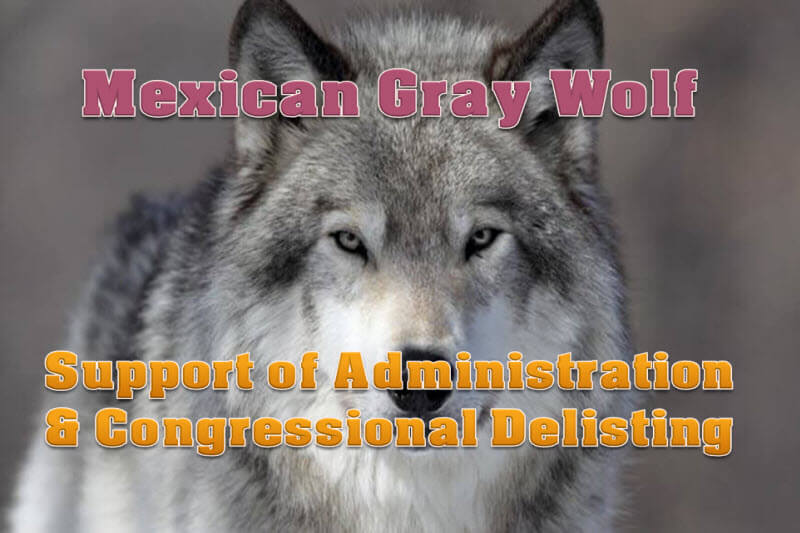 Support For Gray Wolf Delisting - Don McDowell