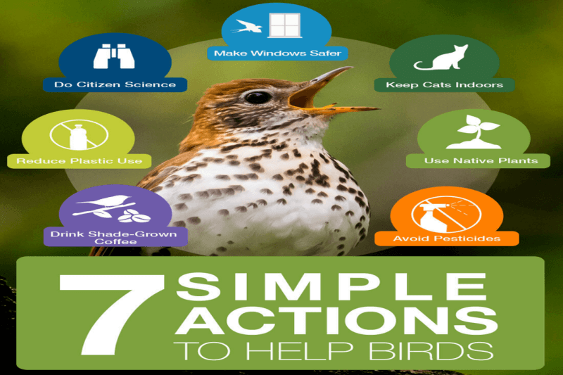 7 Simple Actions