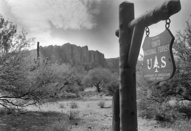 Tonto Natl Forest (1)