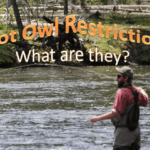 What are Hoot Owl Restrictions?